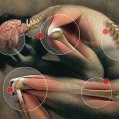 Нехватка витамина вызывает боли в теле