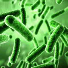 Дисбактериоз (дисбиоз) кишечника: современное состояние проблемы, комплексная диагностика и лечебная коррекция. Часть 1