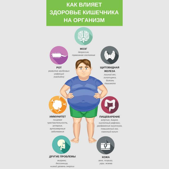 Состояние кишечника влияет на продолжительность жизни