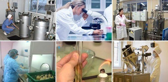 Способ получения пробиотического бактериального препарата, содержащего структурные компоненты микробной клетки