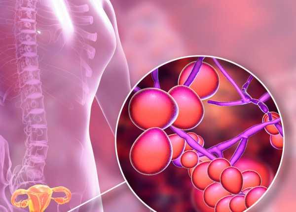 Коррекция нарушений микробиоценоза влагалища и кишечника беременных женщин как способ профилактики инфекционно-воспалительных заболеваний у родильниц и новорожденных