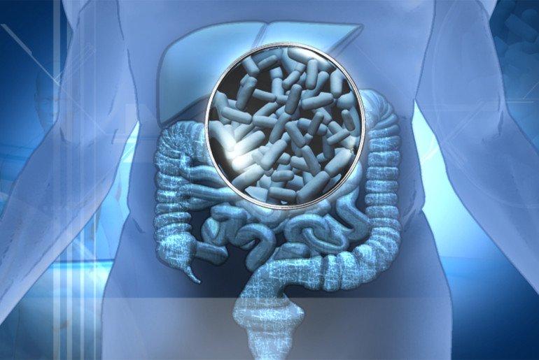 Пробиотики в терапии заболеваний ЖКТ