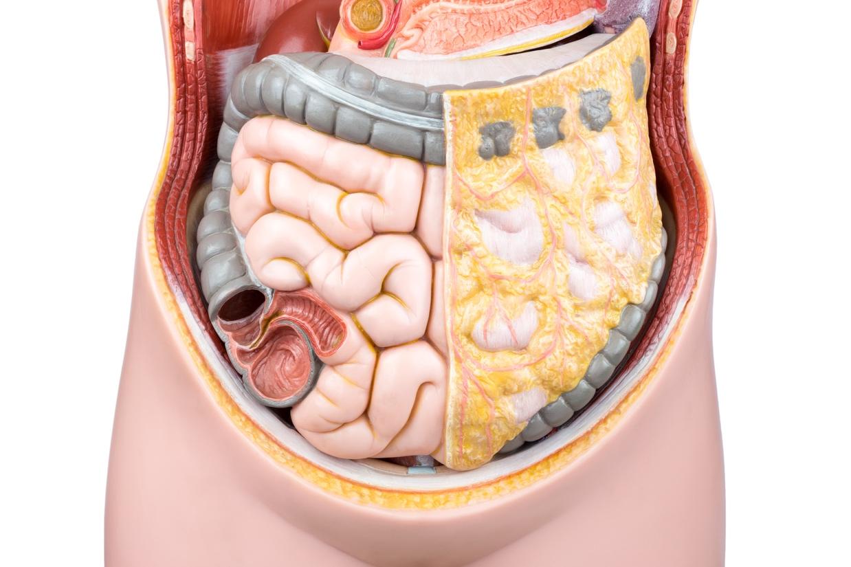 Избыточный бактериальный рост в кишечнике: патогенетические особенности и лечебные подходы