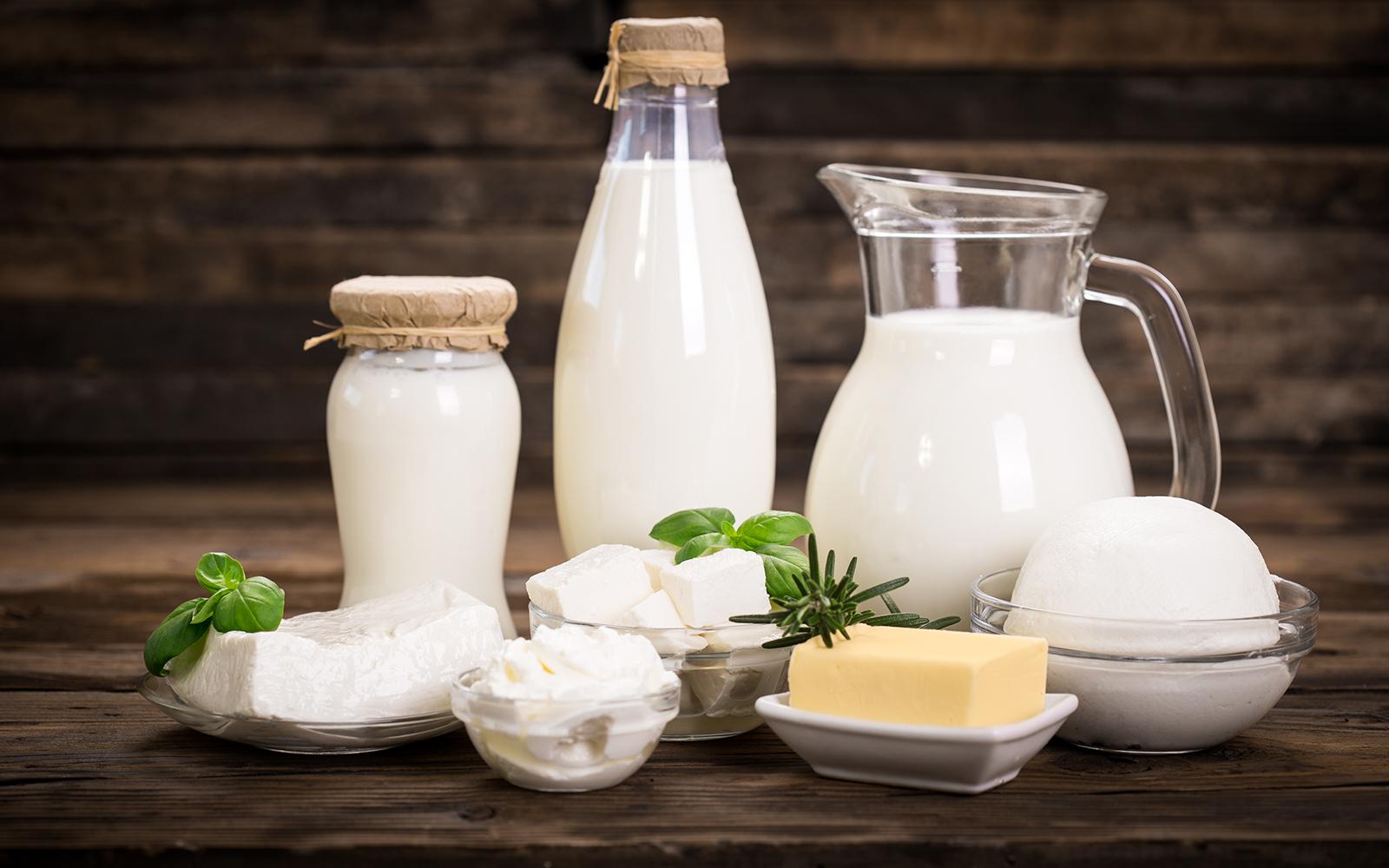 Микробиологическая оценка качества различных кисломолочных продуктов