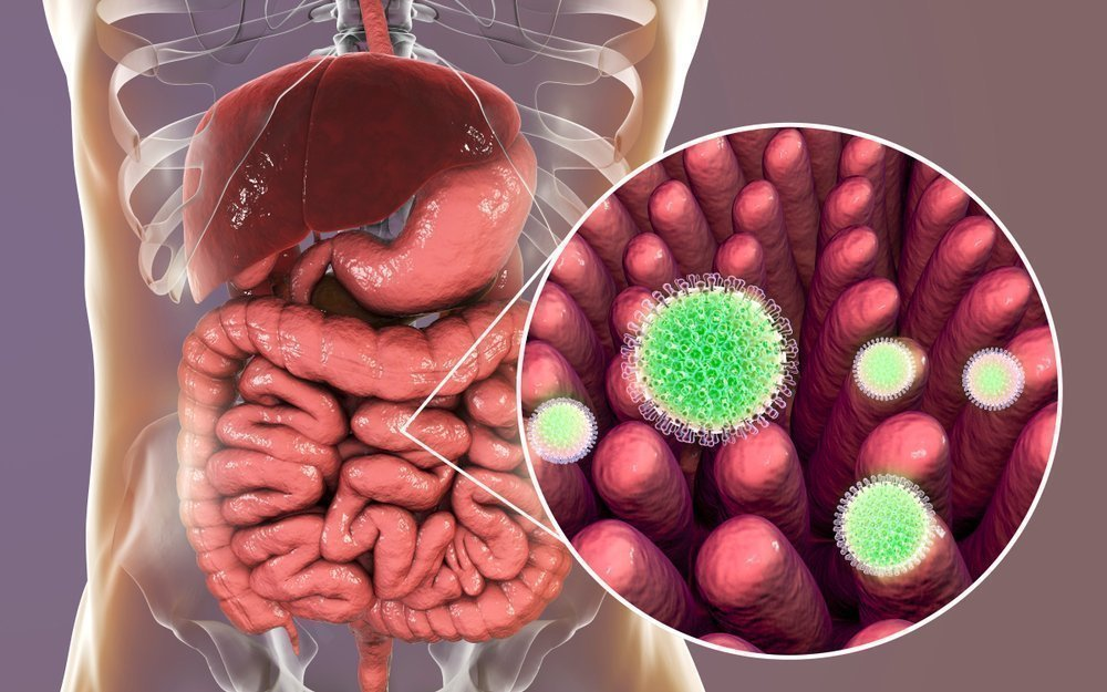 Особенности применения препаратов для микробиологической коррекции дисбактериоза кишечника у детей
